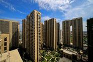 荆州市沙北徐桥A片区(1500户)